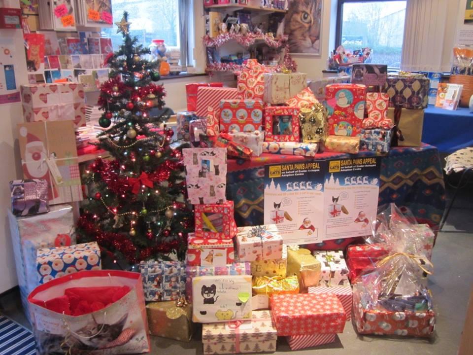 Santa Paws Appeal a success!