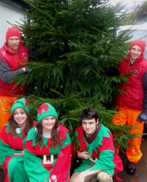 Tree donation spruces up Christmas for charity | The Exeter Daily