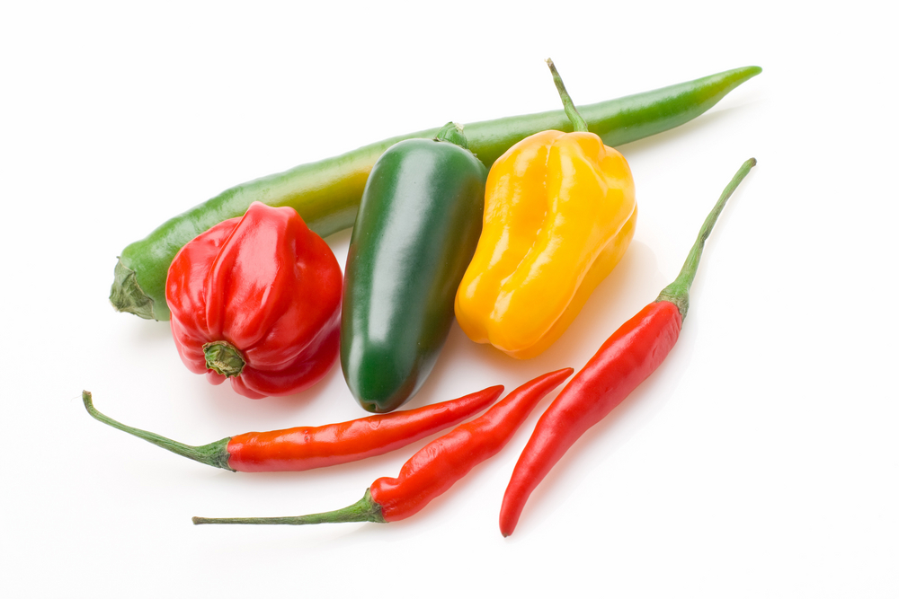 Growing your own chillies has never been easier | The ...