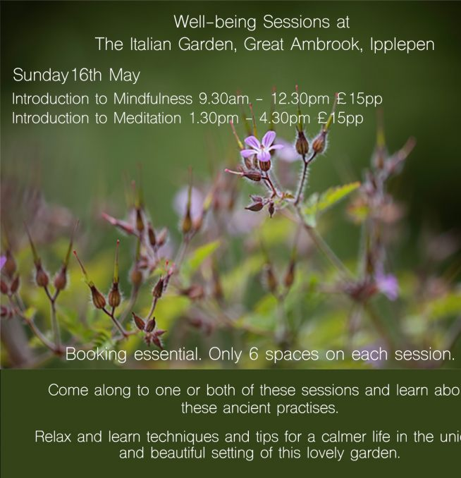 Introduction to Mindfulness - Well-being Sessions