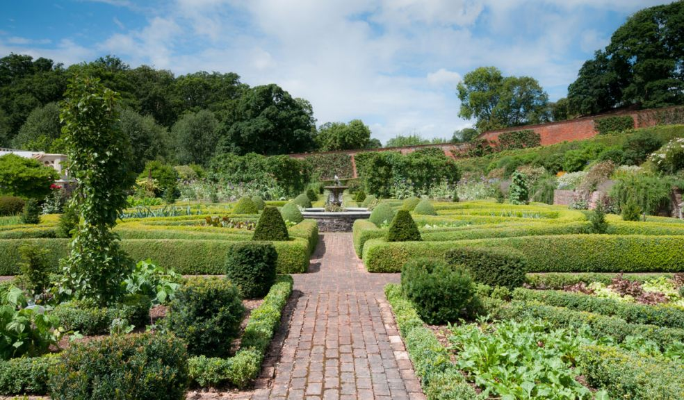 The gardens at Holcombe Rogus