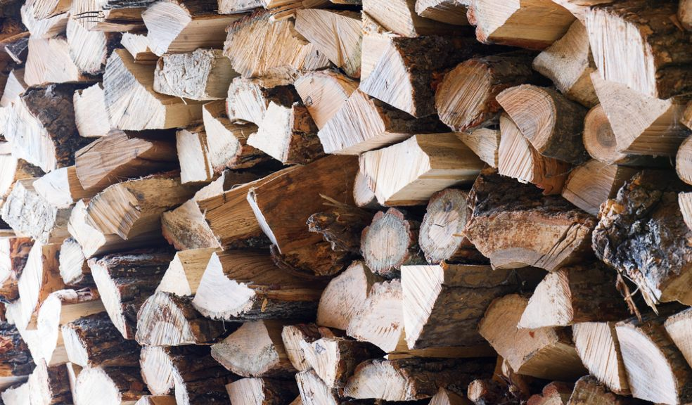 Free Firewood At Donkey Sanctuary The Exeter Daily