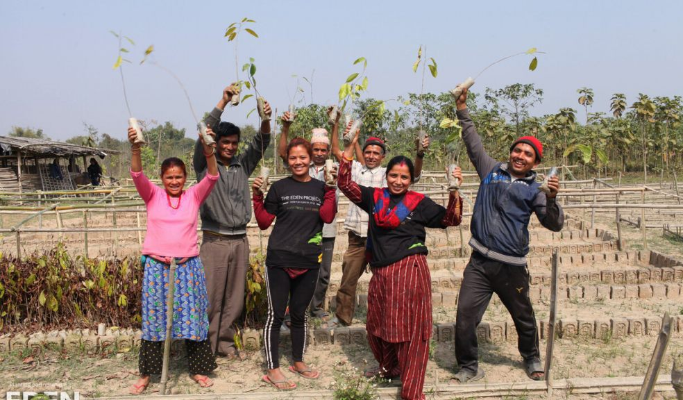 'The Billion Trees Project' helps rebuild sustainable communities