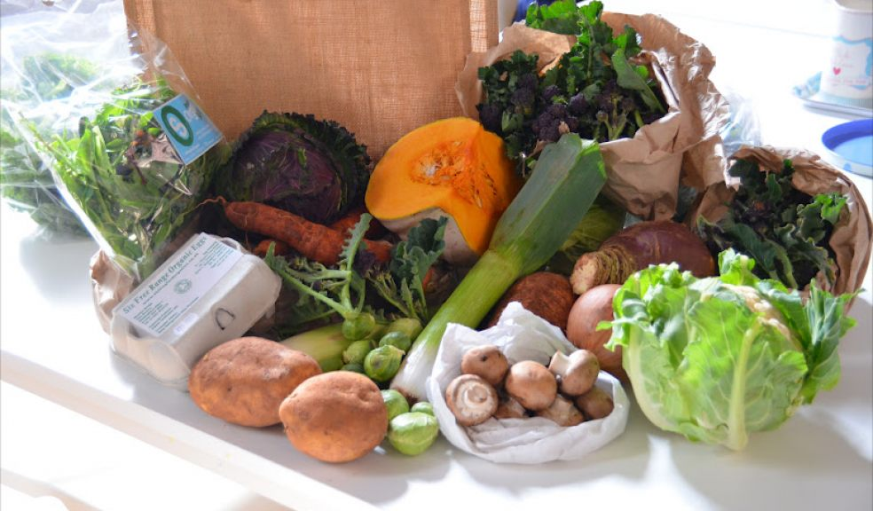 Local vegetable delivery business expands | The Exeter Daily