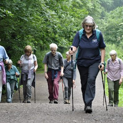 Six over 50s are following a Nordic walking leader up a hill